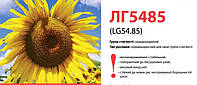 Семена подсолнечника (Лимагрейн) LG 5485