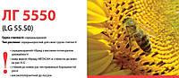 Семена подсолнечника (Лимагрейн) LG 5550