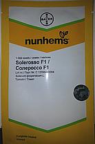 Семена томата Солероссо F1 (Nunhems) 1000 семян — ультра-ранний (90-95 дн), красный, детерминантный, круглый, фото 3