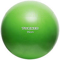 Мяч гимнастический Torneo 55 см (A-208)