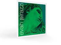 Струн для скрипки PIRASTRO Evah Pirazzi 419021