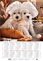 """Календарь настенный """"Забавные пекари"""" 2017"""