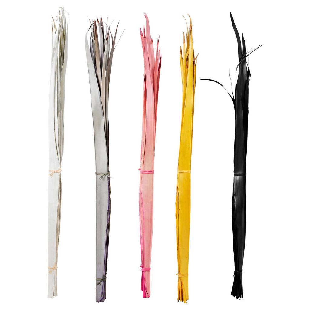 TORKA Сухой букет, пальмовый лист разные цвета