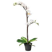 FEJKA Искусственное растение в горшке, Орхидея белый