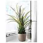 Искусственное растение в горшке IKEA FEJKA трава 501.769.78, фото 2