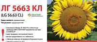 Семена подсолнечника (Лимагрейн) LG 5663 CL