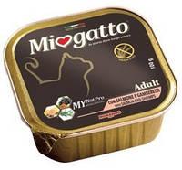 Консервы для взрослых котов Morando Miogatto Adult с лососем и креветками 100 г