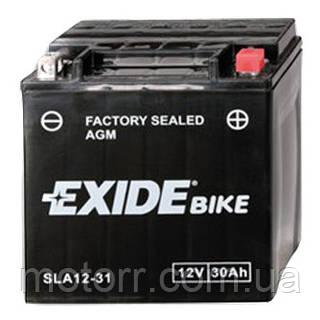 Аккумулятор Exide AGM12-31