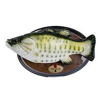 Поющая рыба на стену Веселый Карп ( Подарок рыбаку )