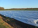 Агроволокно Agreen 19 г/м2 1.6м * 100м, фото 6