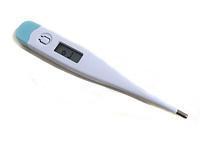 Термометр электронный BLIP-2
