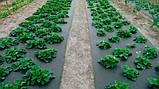 Агроволокно чёрное Premium-Agro P-42 г/м2 3.2х100м, фото 3