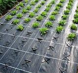 Агроволокно чёрное Premium-Agro P-42 г/м2 3.2х100м, фото 4