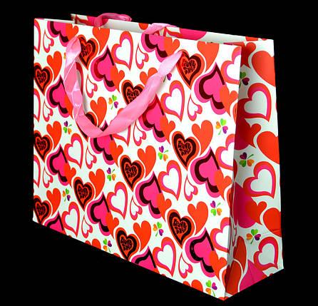 Пакет подарочный m-0004, фото 2