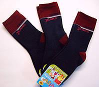 Мальчиковые теплые махровые носки темно-синие