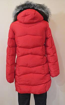 Куртка (молодежка) женская зима, фото 3