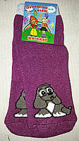 Махровые детские носочки с рисунком собачки, р-р 14-16, 20 грн