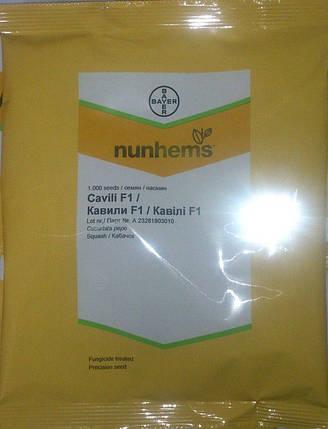 Семена кабачка Кавили F1 (Nunhems) 1000 семян — партенокарпик, ранний гибрид, светлый, фото 2