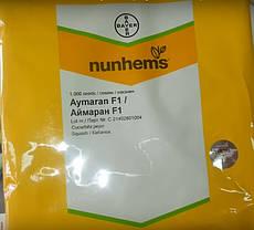 Семена кабачка Аймаран F1 (Nunhems) 1000 семян — партенокарпик, ранний гибрид, светлый, фото 2