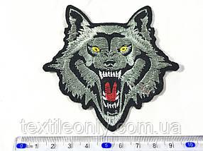 Нашивка Эмблема волк witcher