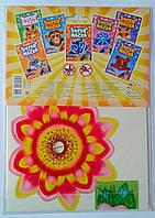 Супер Macкa Фея цветов М570008РУ Ранок Украина