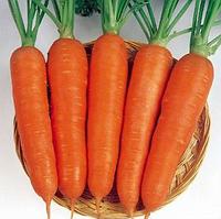 ВИКТОРИЯ F1 - семена моркови Шантане, 0,5 кг, Semenis