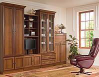 Мебельная стенка Wiki D