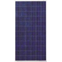 Солнечная батарея (панель) 310 Вт 24В, поликристаллическая PLM-310P-72, Perlight Solar
