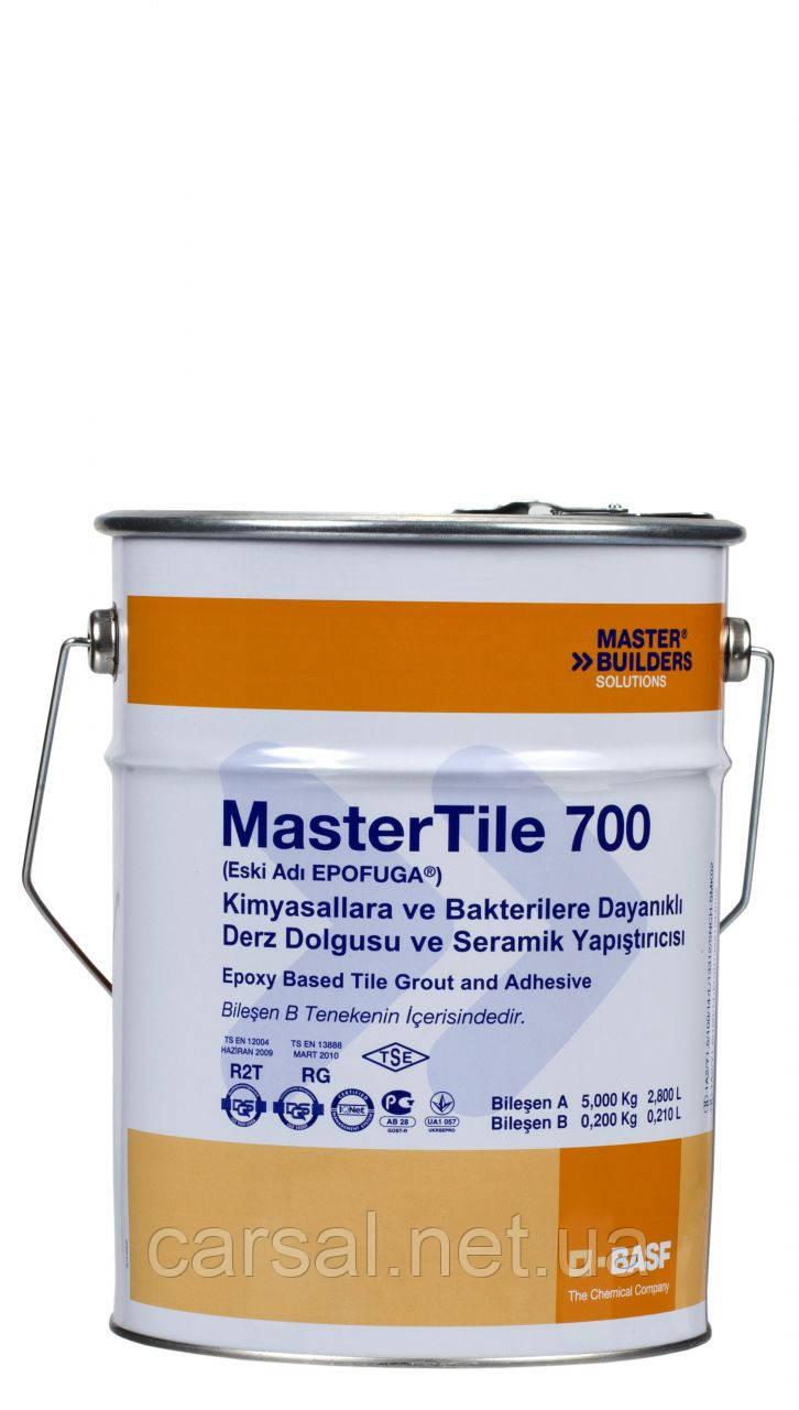 BASF. Эпоксидная затирка Mastertile 700