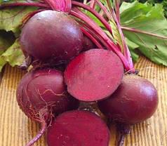 Семена свеклы Детройт (Clause), 250 г — среднепоздняя сортовая (90-100 дней), круглая, столовая, фото 2
