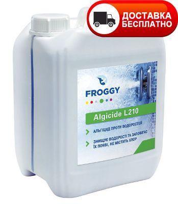 Засіб проти водоростей, Альгіцид, FROGGY Algyrid L210 1 л