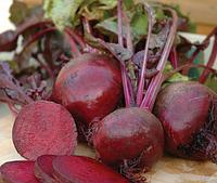 Семена свеклы Нобол (Clause) 250 г - ранняя сортовая (70-90 дней), круглая, столовая.