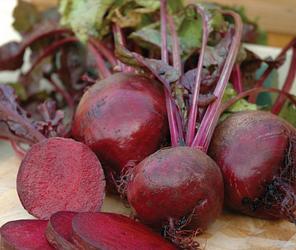 Семена свеклы Нобол (Clause) 1 кг - ранняя сортовая (70-90 дней), круглая, столовая., фото 2