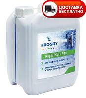 Средство против водорослей, Альгицид, FROGGY Algyrid L210 5 л