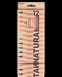 """Олівці кольорові """"MARCO"""" Natural (12 кольорів) 6100-12CB"""
