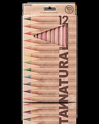 """Олівці кольорові """"MARCO"""" Natural Jumbo (12 кольорів) 6400-12CB"""