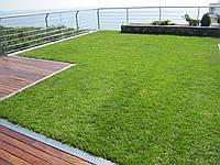 Системи озеленення на експлуатованих покрівлях