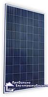 Сонячний фотомодуль Altek ALM-260P, 260 Вт, 24 В