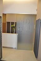 Стеклянные двери раздвижные одностворчатые