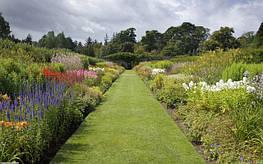 Какими могут быть дорожки в Вашем саду