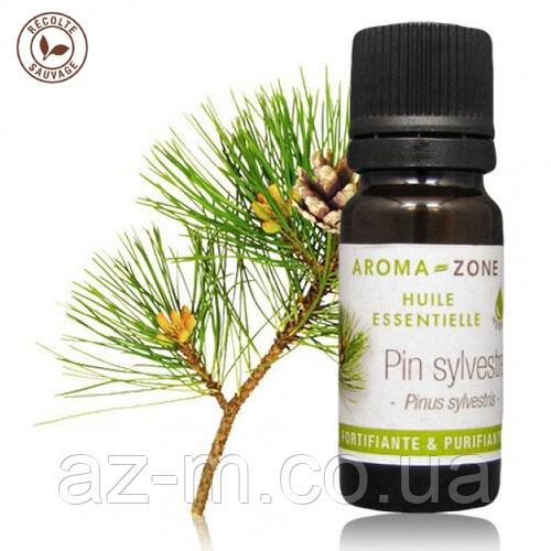 Сосна обыкновенная (Pinus sylvestris) эфирное масло