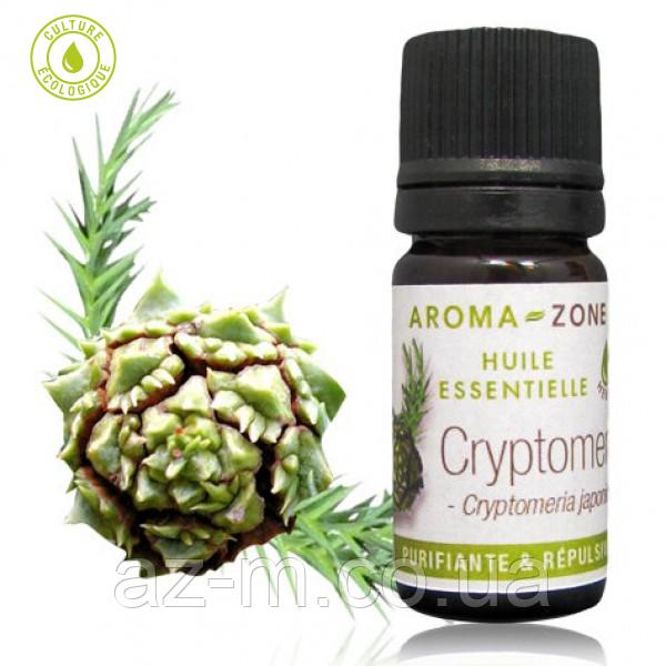 Эфирное масло Криптомерии (Cryptomeria), 5 мл