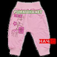 Штанишки на широкой резинке с начесом р. 74 ткань ФУТЕР 100% хлопок ТМ Алекс 3179 Розовый