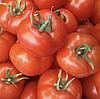 АЛИНДИ F1 - семена томата, Enza Zaden