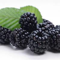 Ароматизатор Blackberry (ежевика) TPA