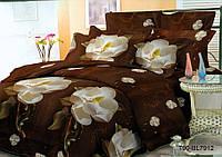 Комплект постельного белья 3D темно коричнивые  цвети