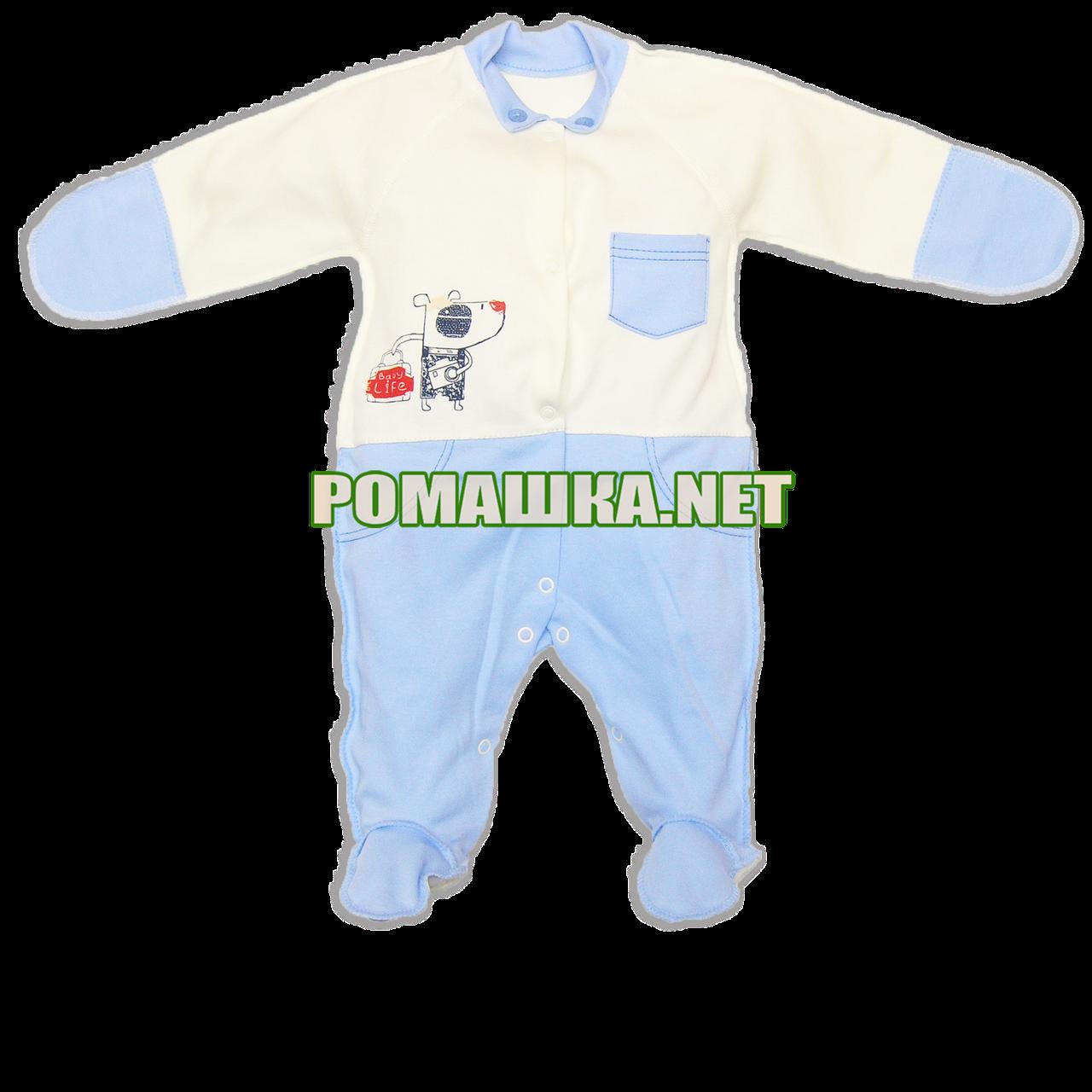 Человечек для новорожденного р. 56 демисезонный ткань ИНТЕРЛОК 100% хлопок ТМ Baby A 3193 Голубой