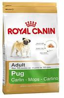 Корм Royal Canin Pug Adult