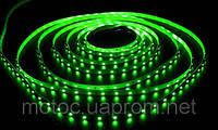 Cветодиодная лента SMD 3528  5м Green (зелёная) 300 диодов