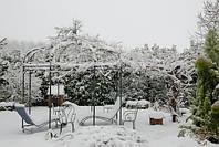 Плодовые деревья в конце зимы